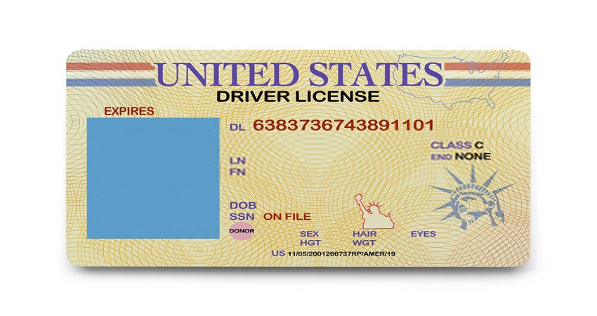 Where Is the Audit Number on TX Driver's License